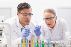 Focused scientists examining test tube Stock Photography