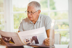 Focused senior man reading newspaper Stock Photography