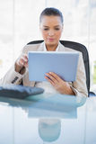 Focused sophisticated businesswoman holding tablet computer. Focused sophisticated businesswoman in bright office holding tablet computer royalty free stock photos