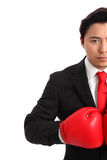 Focused staring businessman boxer. Businessman wearing red boxing gloves and a black suit with a red tie. White background Royalty Free Stock Photo