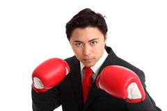Focused staring businessman boxer. Businessman wearing red boxing gloves and a black suit with a red tie. White background Royalty Free Stock Photography