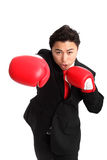 Focused staring businessman boxer. Businessman wearing red boxing gloves and a black suit with a red tie. White background Stock Image