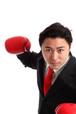 Focused staring businessman boxer. Businessman wearing red boxing gloves and a black suit with a red tie. White background Stock Images