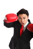 Focused staring businessman boxer Royalty Free Stock Photography