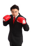 Focused staring businessman boxer Stock Image