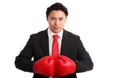 Focused staring businessman boxer. Businessman wearing red boxing gloves and a black suit with a red tie. White background Royalty Free Stock Images