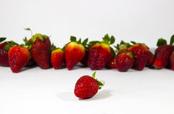 Focused strawberry with background of strawberries Royalty Free Stock Photos