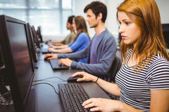 Focused student in computer class Royalty Free Stock Image