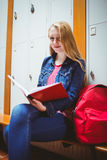 Focused student sitting and studying on notebook Royalty Free Stock Images
