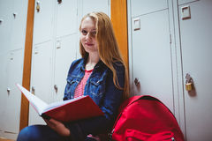 Focused student sitting and studying on notebook Royalty Free Stock Photos
