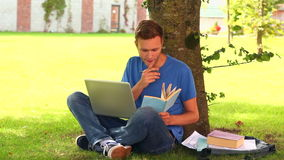 Focused student studying outside Royalty Free Stock Photography