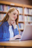 Focused student using laptop in library Stock Photos