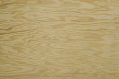 Focused texture of some piece of plywood. Texture of some piece of plywood Royalty Free Stock Photos