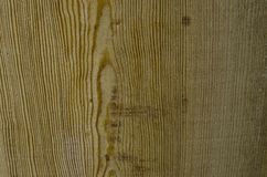 Focused texture of some piece of wood. Texture of some piece of wood Royalty Free Stock Images