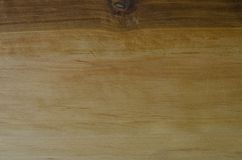Focused texture of some piece of wood. Texture of some piece of wood Royalty Free Stock Photo