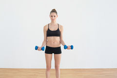 Focused toned woman lifting blue dumbbells Stock Image