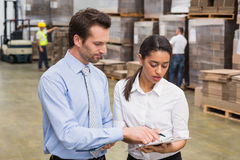 Focused warehouse managers working together Stock Images