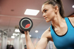 Focused woman lifting dumbbell while sitting down Stock Image