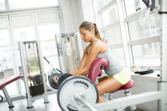 Focused young beautiful woman lifting weights in a gym Royalty Free Stock Images