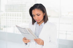 Focused young dark haired businesswoman reading a document Stock Photos