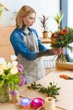 Focused young florist in apron holding beautiful bouquet. In flower shop royalty free stock photos