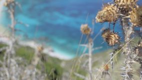 Focusing from dry Wild Thorn to Sea on Petani Beach Kefalonia Greece. Focusing from dry Wild Thorn to blue lagun, beach on Petani Beach Kefalonia Greece stock video footage
