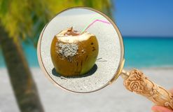 Focusing in on a tropical drink Royalty Free Stock Photo