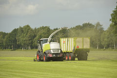 Foderskördearbetare och transport av gräs Royaltyfri Foto