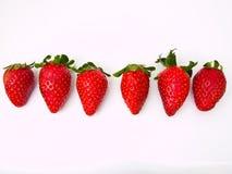 Fodra av sex nya jordgubbar som isoleras på vit Arkivbild