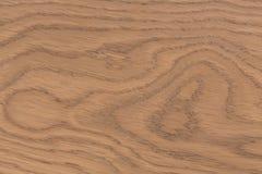 Fodra brädeväggen Träbakgrundsmodell Visningtillväxtri Royaltyfria Bilder