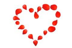 fodrad rose valentin för petal royaltyfri bild