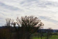 foehn天空和云彩在秋天月11月 免版税库存照片