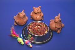 Foerage voor katten Stock Afbeelding