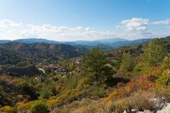 Fofest on Troodos mountains. Beautiful landscape of pine forest in Troodos Mountains in autumn, Limassol district, Cyprus Stock Photography