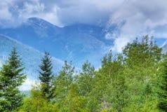 Fog виды над голубыми горами и зеленым foilage Стоковая Фотография RF