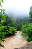 fog горы Стоковые Изображения