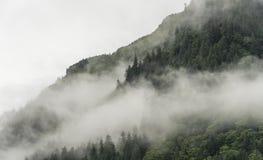 Fog покрывать леса горы с облако нижнего яруса в Juneau Аляске для ландшафта тумана стоковые фото