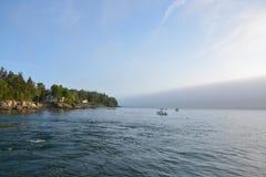 Fog приходить в og Мейн побережья стоковые изображения rf