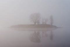 fog утро Стоковая Фотография