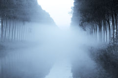 Fog Royalty Free Stock Image