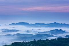Fog. Mountain and fog at  tropical zone Royalty Free Stock Images