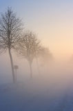 Fog Royalty Free Stock Photography