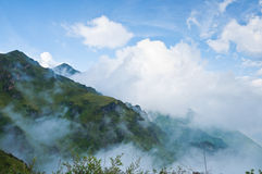 The fog Stock Photos