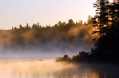 Fog. Sunrise and mist in beautiful lake in Algonquin Park Royalty Free Stock Images