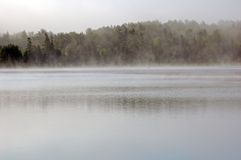 Fog. Strong fog above lake in the morning Royalty Free Stock Image