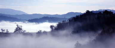 Fog. View with the fog of the morning Stock Photography