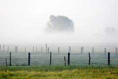 Fog Royalty Free Stock Photo