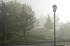 Fog above green grass Royalty Free Stock Image
