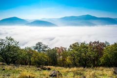 Fog above the river royalty free stock photos