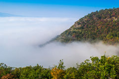 Fog above the river Royalty Free Stock Photography